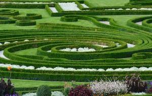 Pozytywne strony posiadania ogrodu