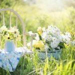 Moda na japońskie ogrody