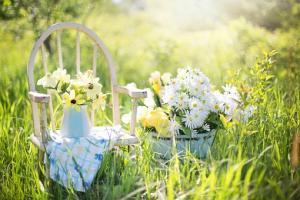 Ogród przyjazny dziecku
